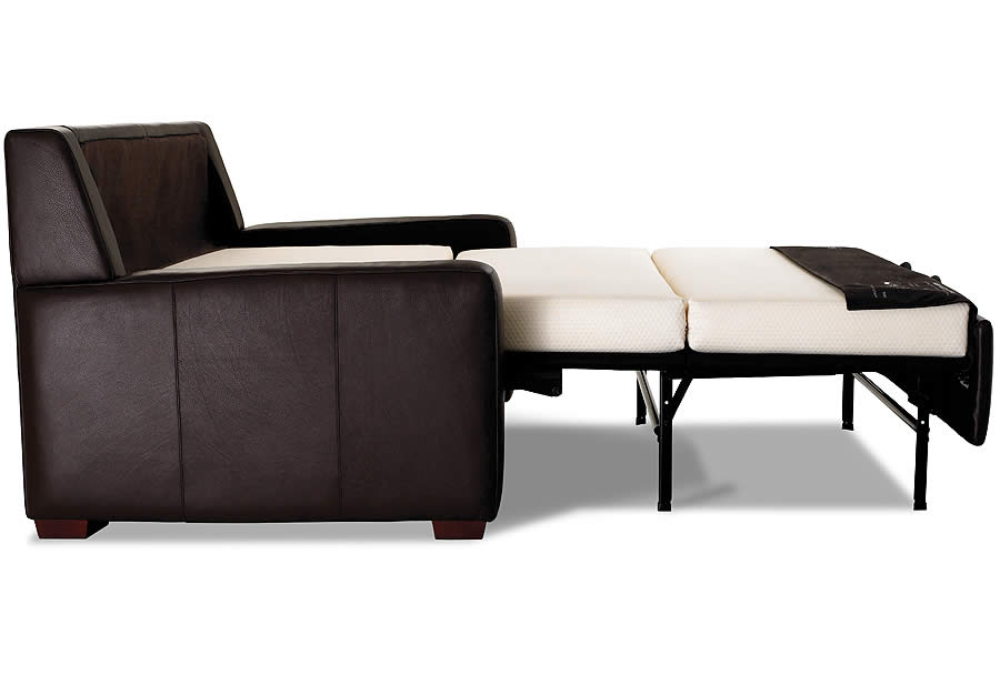 Lyndon Comfort Sleeper - Sofas & Chairs of Minnesota